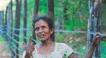 Au Sri Lanka, le retour teinté d'amertume des Tamouls dans leurs murs