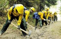 Les Etats-Unis en proie à de gigantesques feux ravageurs