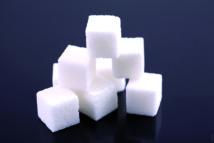 Appel à l'amélioration de l'efficacité et l'efficience du secteur sucrier