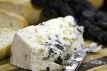 Les secrets du fromage révélés grâce au génome de moisissures
