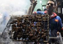 Dans les quartiers pauvres du Caire, les gargotes attirent les riches