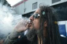La consommation de cannabis a doublé aux Etats-Unis en dix ans