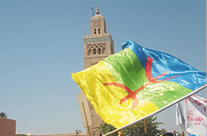 Plus de 700 ONG exigent la mise en œuvre du statut officiel de la langue amazighe