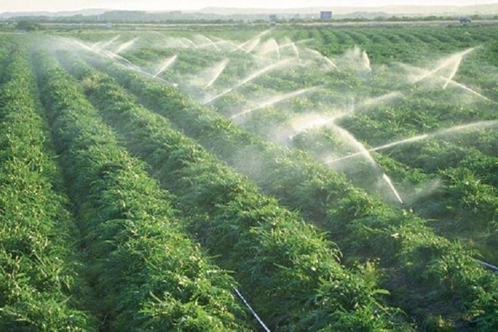 Un nouveau cycle de recensement de l'agriculture mondiale lancé par la FAO