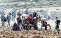 L'UE impose une mention sur les produits des colonies israéliennes