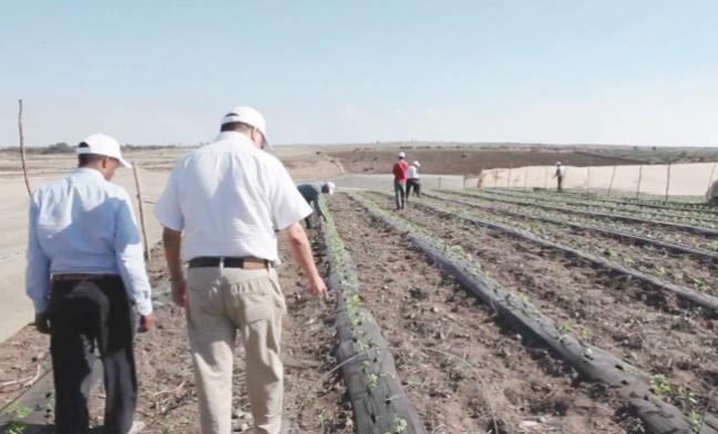 Large campagne de sensibilisation sur les nouvelles dispositions de l'agrégation agricole