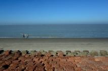 Au Bangladesh, la bataille perdue d'une île face à la montée des eaux