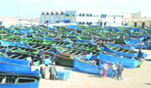 Le syndicat des fonctionnaires du ministère des  Pêches s'insurge contre les attaques de ses adhérents