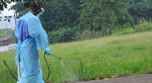 Plus aucun cas d'Ebola en Afrique de l'Ouest