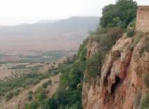 Interpellation de 10 braconniers dans le secteur forestier de Rchida près de Guercif