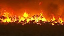 Feux de forêt en Australie