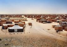 Le Comité de lutte contre la corruption réclame le contrôle de la distribution de l'aide humanitaire