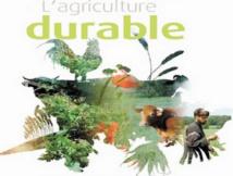 Mohammedia abrite le 1er Forum de l'agriculture durable