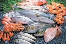 Hausse nette des produits commercialisés de la pêche côtière et artisanale