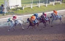 La SOREC insensible aux risques encourus par les jockeys