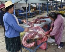 La viande de lama, pari gastronomique de la Bolivie