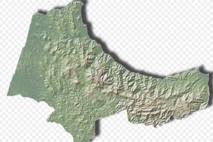 Plus de 900.000 bovins, ovins et caprins vaccinés dans la province de Tanger-Tétouan-Al Hoceima