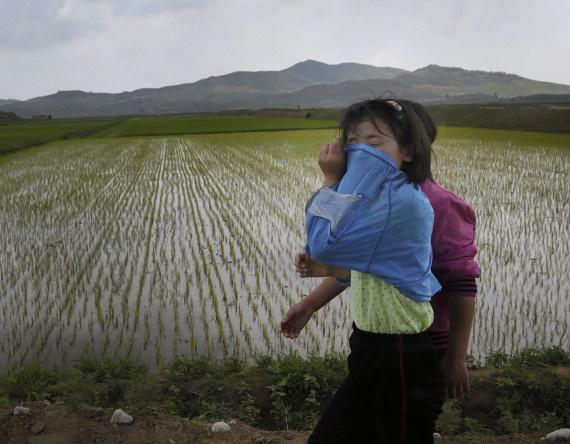 Trois quarts des Nord-Coréens ont besoin d'aide humanitaire