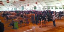 Les agriculteurs marocains doivent relever un grand défi