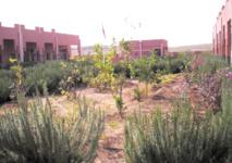 L'éducation au service de l'environnement dans la région de Casablanca-Settat