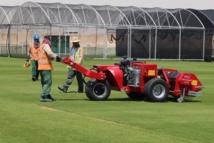 A la recherche de l'herbe parfaite pour le Mondial au Qatar