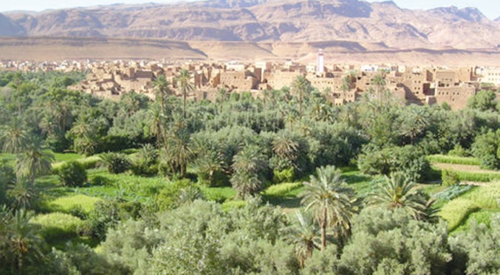 Le programme de développement territorial durable des oasis de Tafilalet, un projet exemplaire de développement local