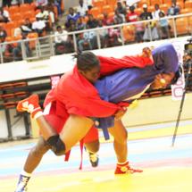 Championnat d'Afrique de sambo