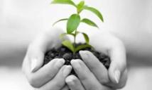 Nécessité de renforcer  la législation nationale en matière  de protection de l'environnement