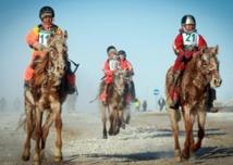 En Mongolie, le rêve des enfants-jockeys peut tourner au cauchemar