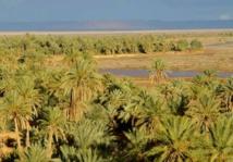 Débat à Errachidia sur la question des changements climatiques
