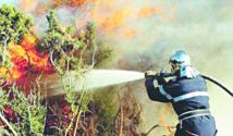 Baisse de 67% des superficies incendiées par rapport aux 10 dernières années