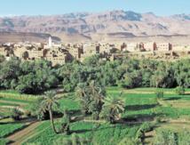 Les oasis marocaines face  aux changements climatiques