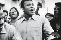 Quand un poids coq indien défiait Mohamed Ali