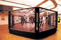 Le MMA attire irrésistiblement en France malgré des combats interdits