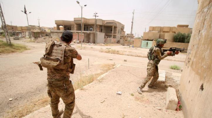 """L'Irak confronté à un """"désastre humanitaire"""" à Fallouja"""