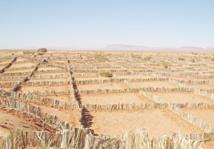 Présentation de l'expérience marocaine en matière de gestion durable des terres