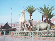 Près de 17,29 % des ménages ont accès à Internet dans la région de Guelmim-Oued Noun