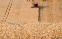 Manger plus de céréales complètes réduirait le risque de mortalité