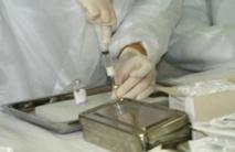 Le vaccin le plus avancé contre le paludisme moins efficace après quelques années