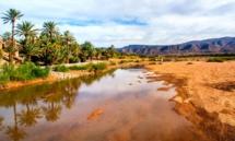 Trois initiatives complémentaires à la COP22 au nom du Maroc