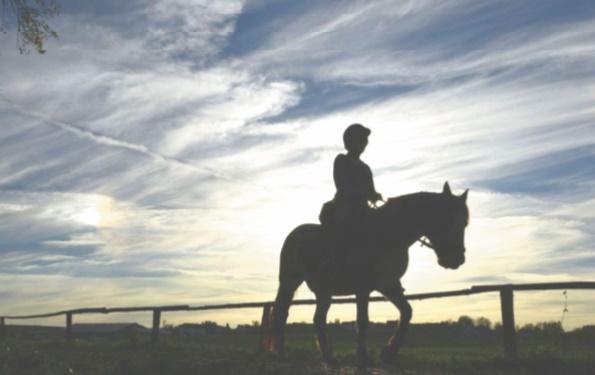 Au Tyrol, le cheval pour remettre en selle de jeunes réfugiés traumatisés