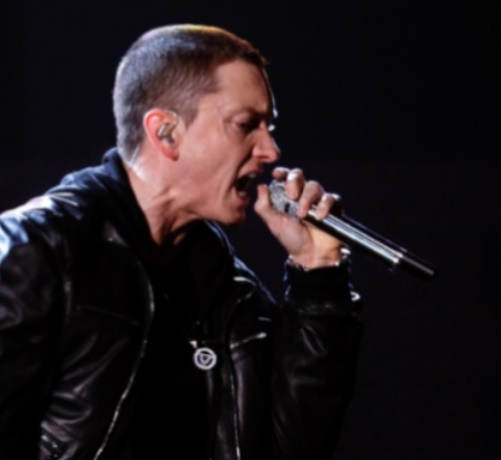 Eminem The Slim Shady : The Marshall Mathers LP 2 et Shady XV (depuis 2012)