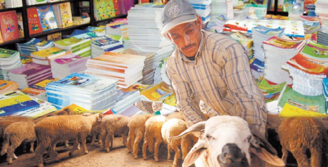 Mouton et rentrée scolaire s'allient pour malmener au mieux les ménages