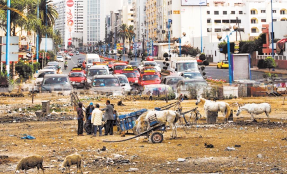 Régionalisation avancée : Les chiffres du HCP ne font pas dans l'équivoque Enième ratage du gouvernement Benkirane