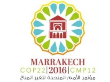 Mobilisation des financements pour que la COP 22 soit celle de l'action