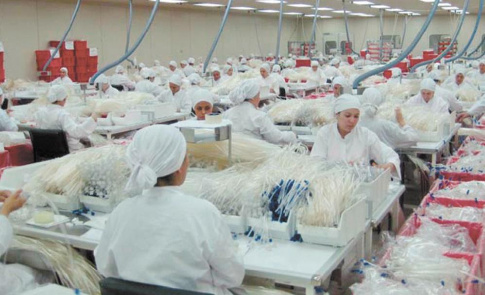 Baisse prévue dans les secteurs de l'industrie manufacturière et de la construction