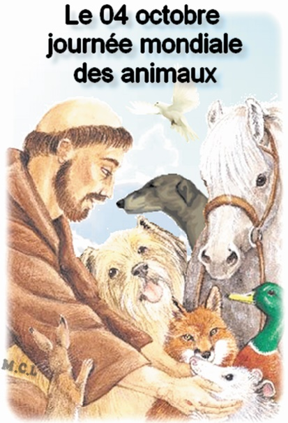 Vers la protection de la vie animale sous toutes ses formes, sauvage et domestique