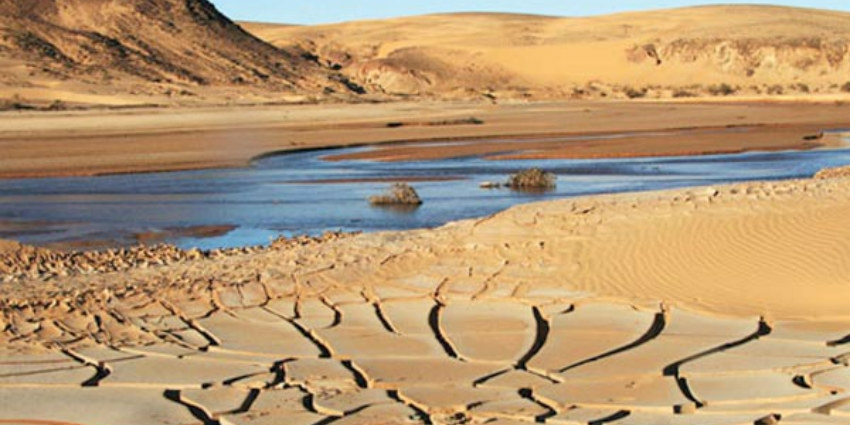 """Clôture des travaux du colloque écosystème et changements climatiques"""" à Casablanca"""