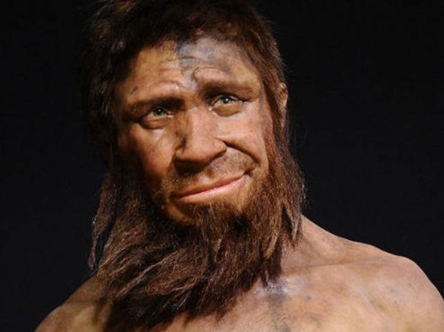 Des gènes néandertaliens derrière les différences ethniques dans la réponse immunitaire