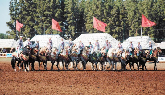 Le Festival de la Tbourida à Oujda sous le signe des traditions équestres
